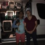 Coast to Coast Pet Delivery and Pet Travel