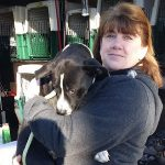 pet delivery for rescues